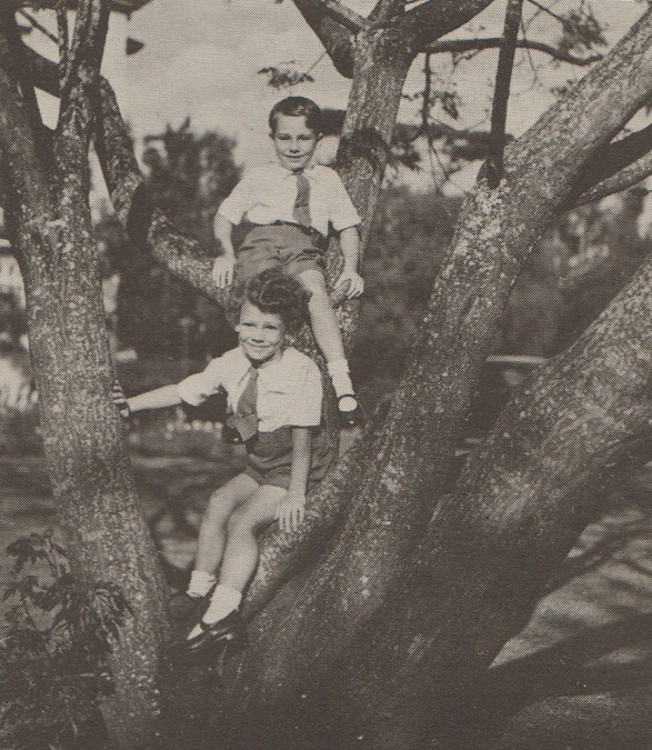Prince Karim and Prince Amyn at play on a tree