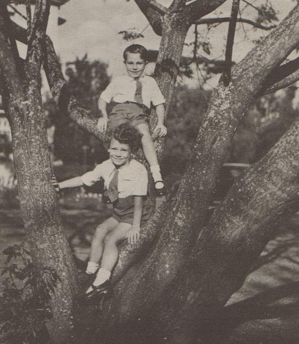 Prince Karim and Prince Amyn at play on a tree
