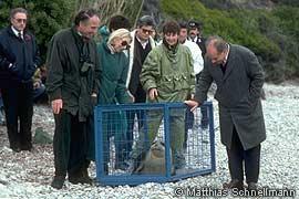Prince Sadruddin Release of Orphaned Monk Seal