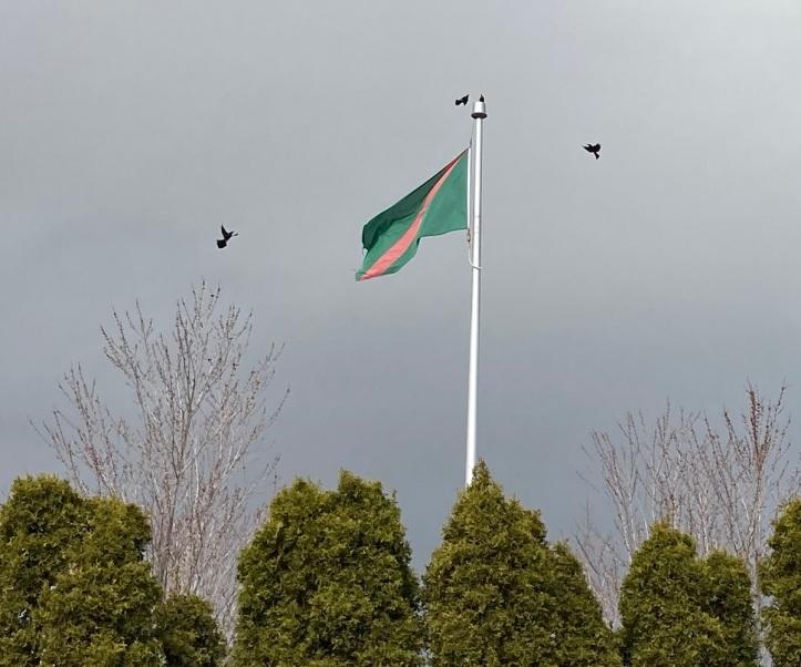 Ismaili Flag Aga Khan Park Barakah